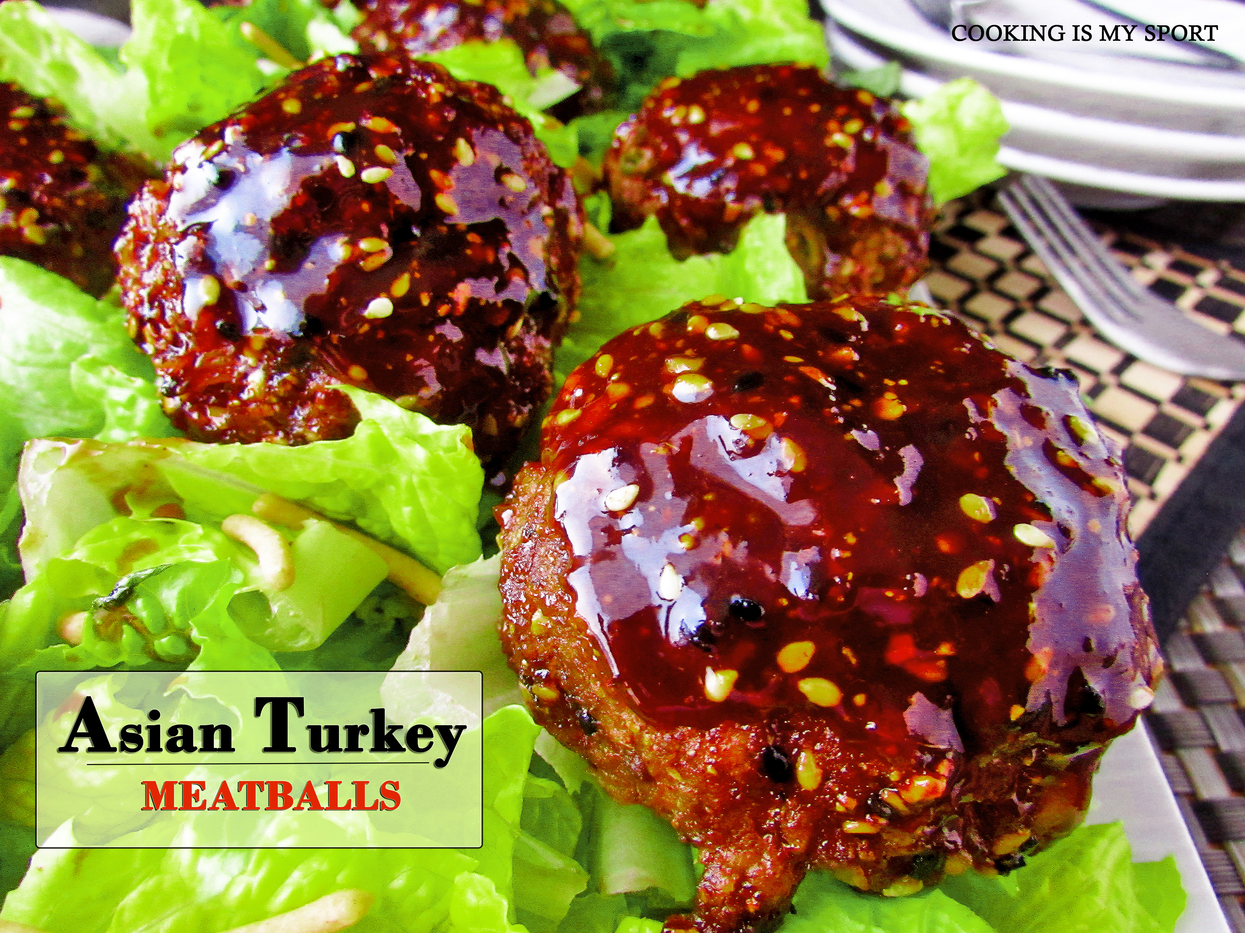 Asian Turkey Meatballs2