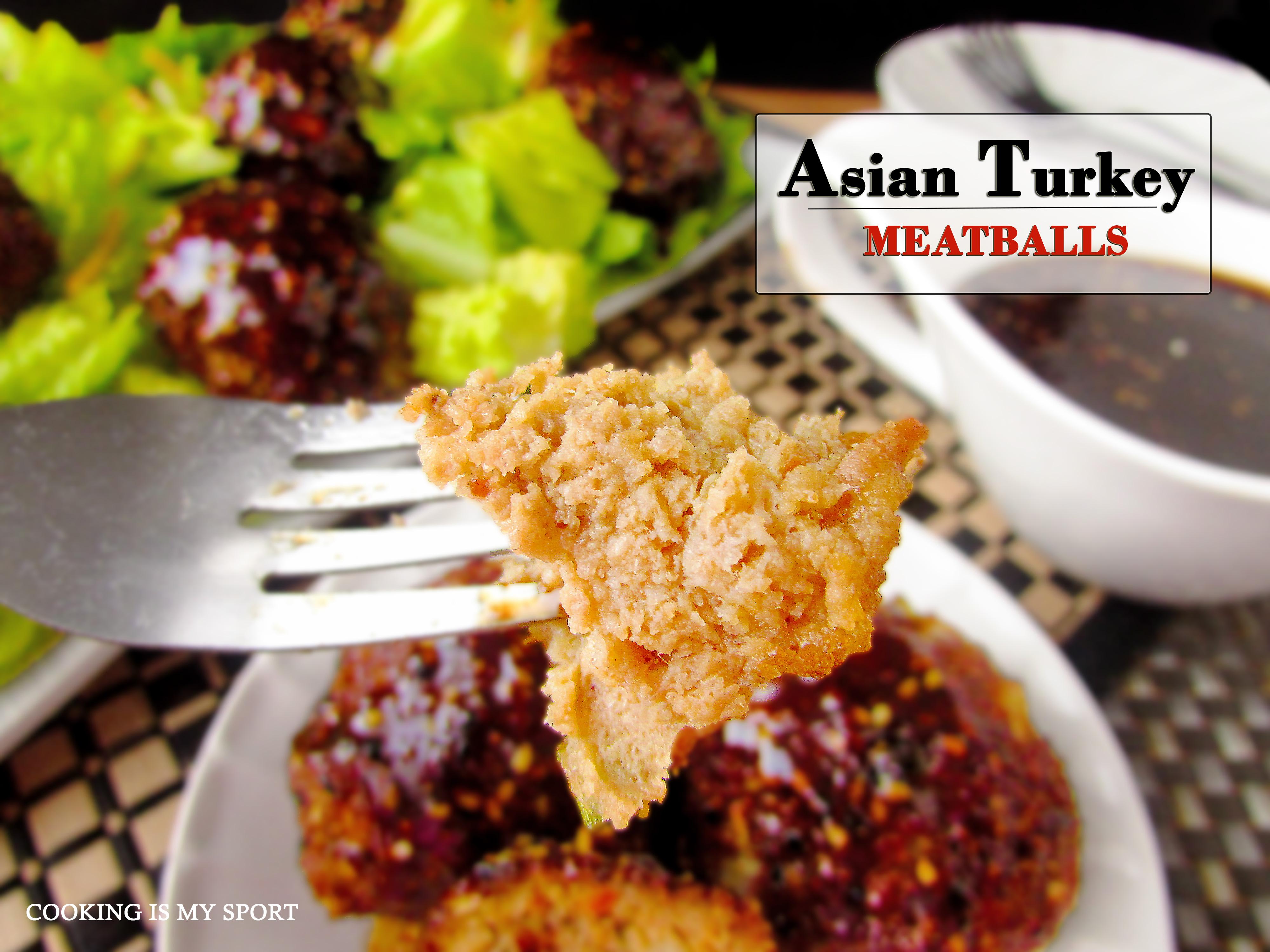 Asian Turkey Meatballs5