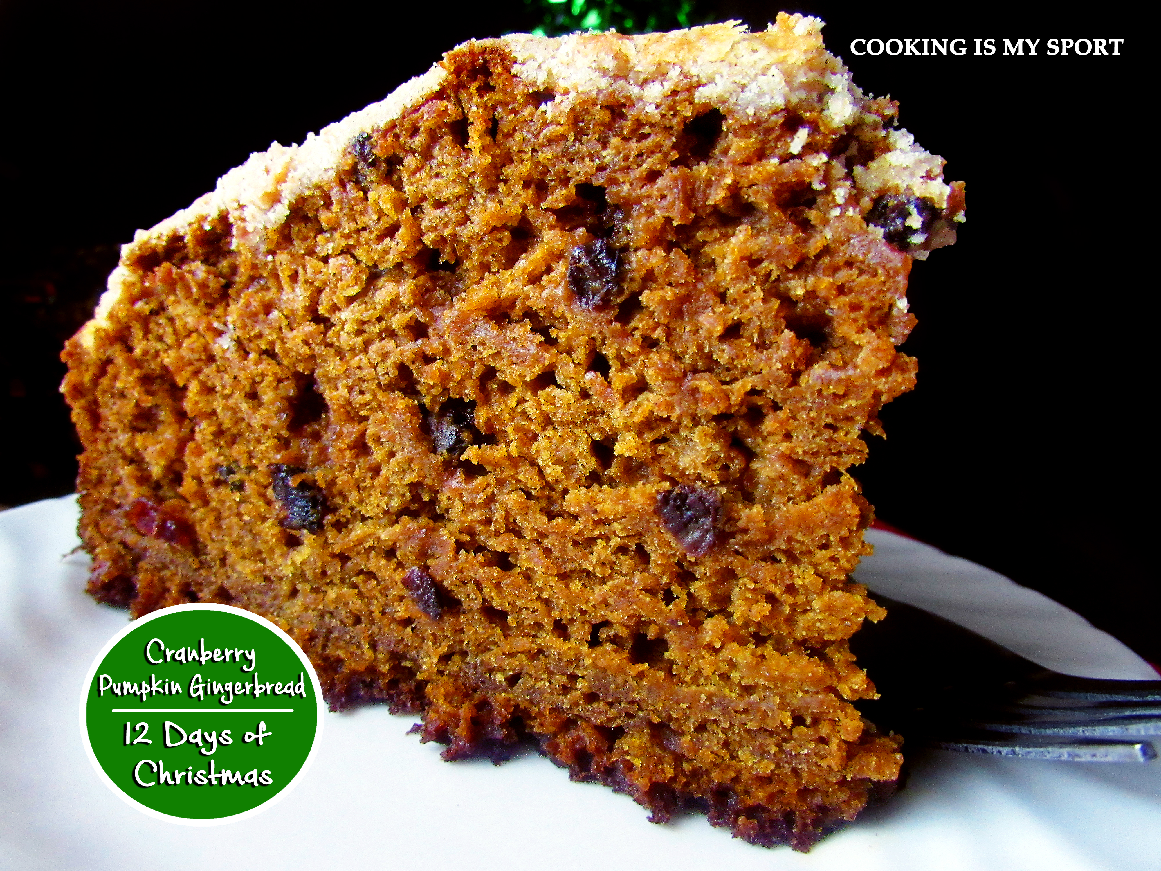 Cranberry Pumpkin Gingerbread3
