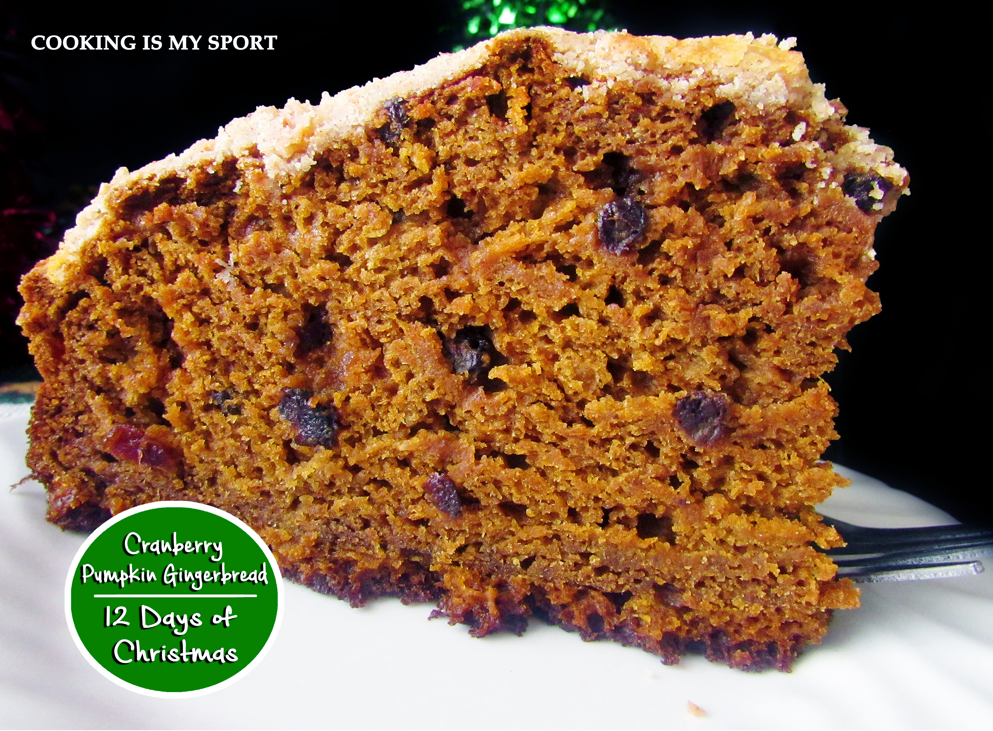 Cranberry Pumpkin Gingerbread5